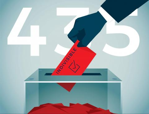 "Digital illustration of a person placing a vote labeled ""Indivisible"""